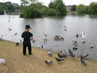 feeding the ducks at baffins pond portsmouth
