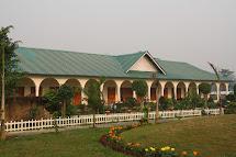 Kaziranga National Park Hotels