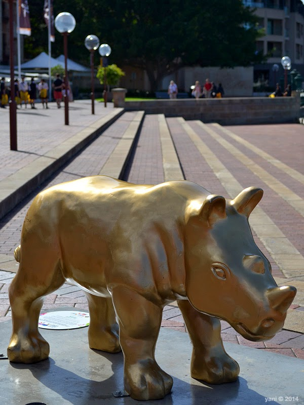 little gold rhino