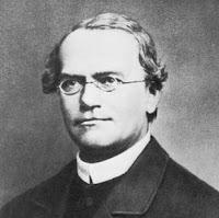 Gregor Mender, descubridor de las leyes hereditarias en los seres vivos
