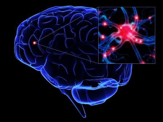 Vení, mejorá y entrená tu cerebro con este post (+INT+WIT)