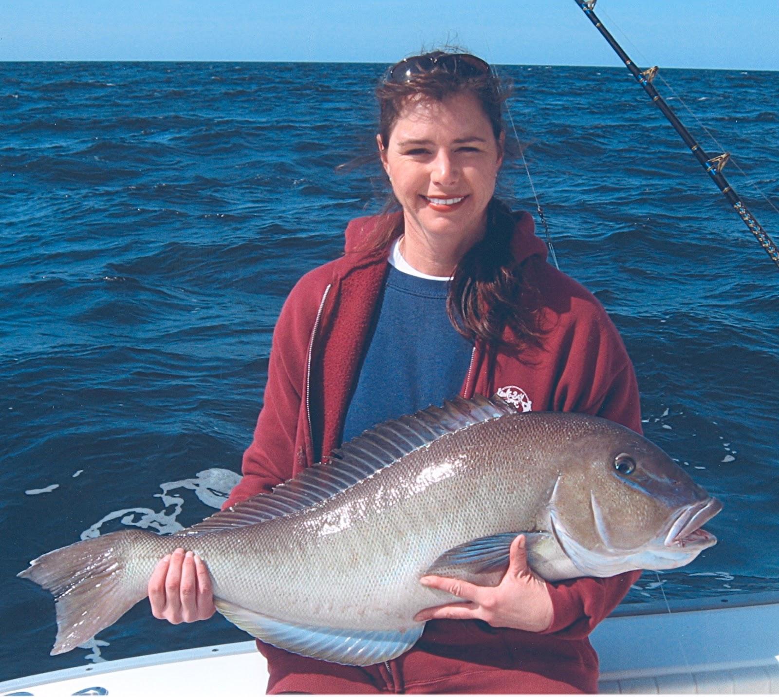 Big fishes of the world tilefish blue line caulolatilus for Largest saltwater fish