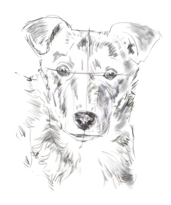 Favori corso di grafica e disegno per imparare a disegnare: Come  VN15