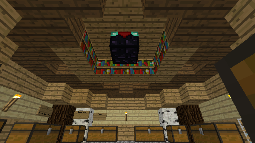 Since There Wasnt Much Room For The Bookshelves And Enchanting Table I Put Them On Ceiling Of My Storage