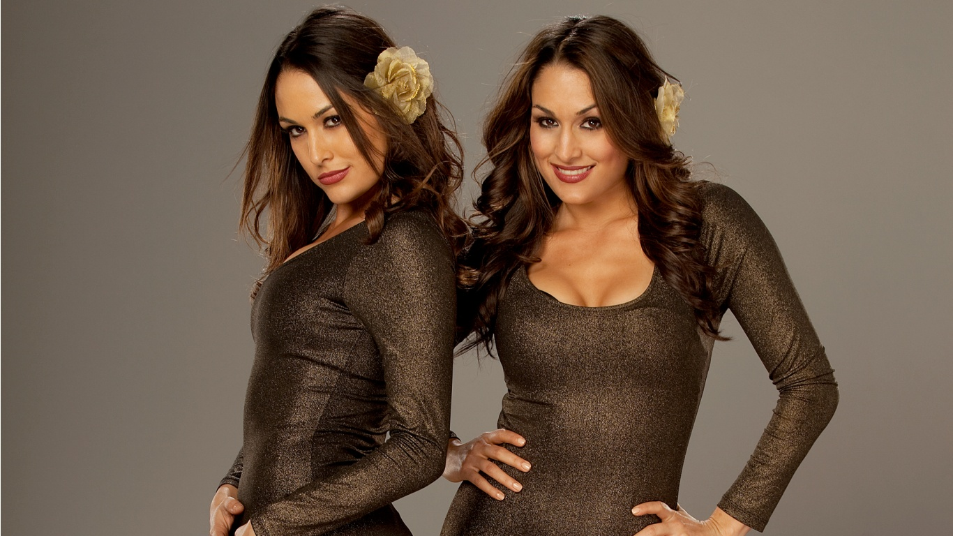 bella twins divas stars fresh hd wallpapers 2013 all