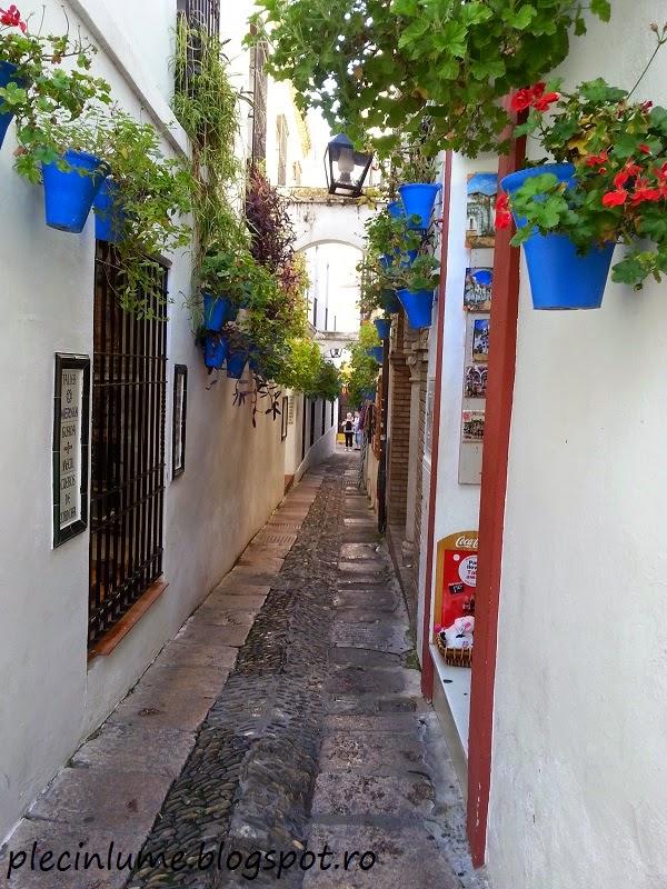 Calle de las flores, in Cordoba