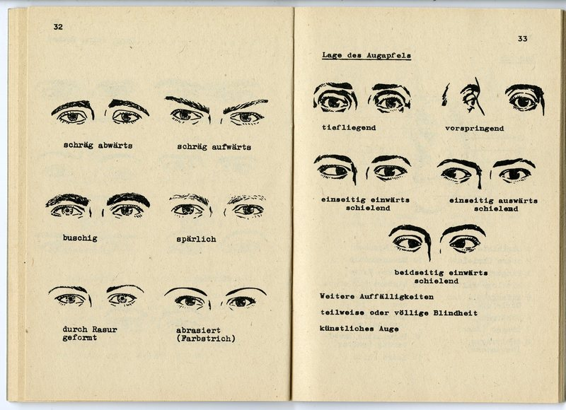 Facial features of german people