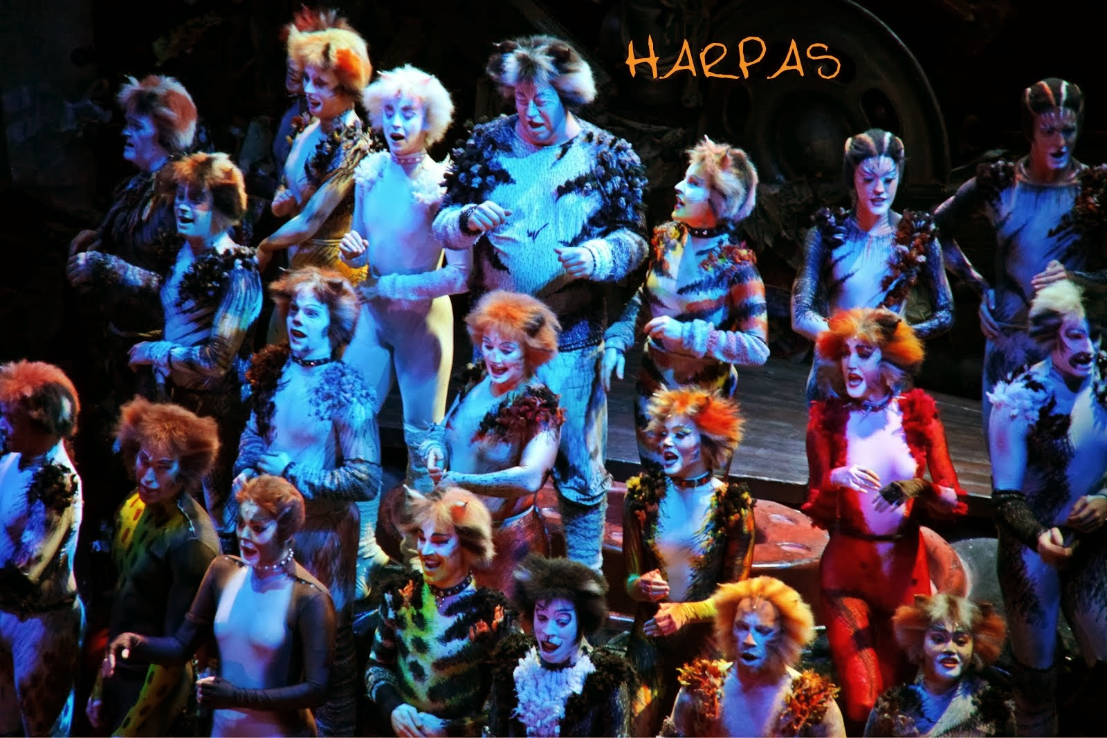 Οι «Cats» του Andrew Weber …..ξεχύθηκαν στο Μέγαρο Μουσικής Θεσσαλονίκης :