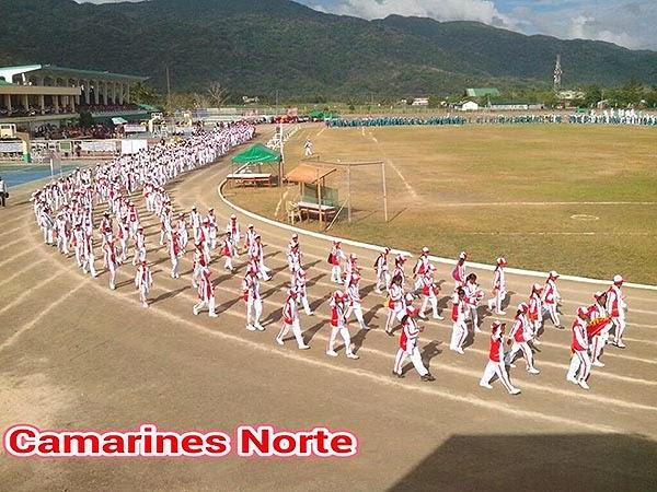 Palarong Bicol 2014 Albay Delegation