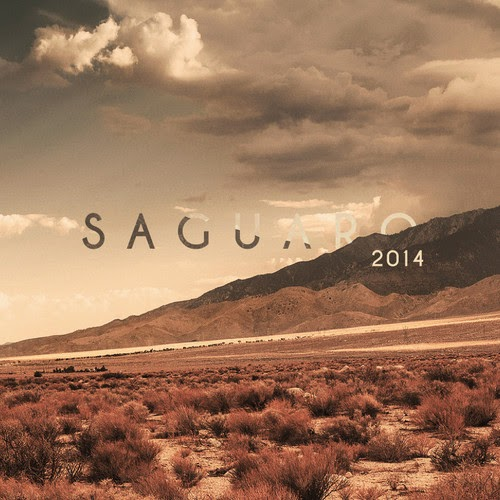 Goldroom - Saguaro Mix 2014