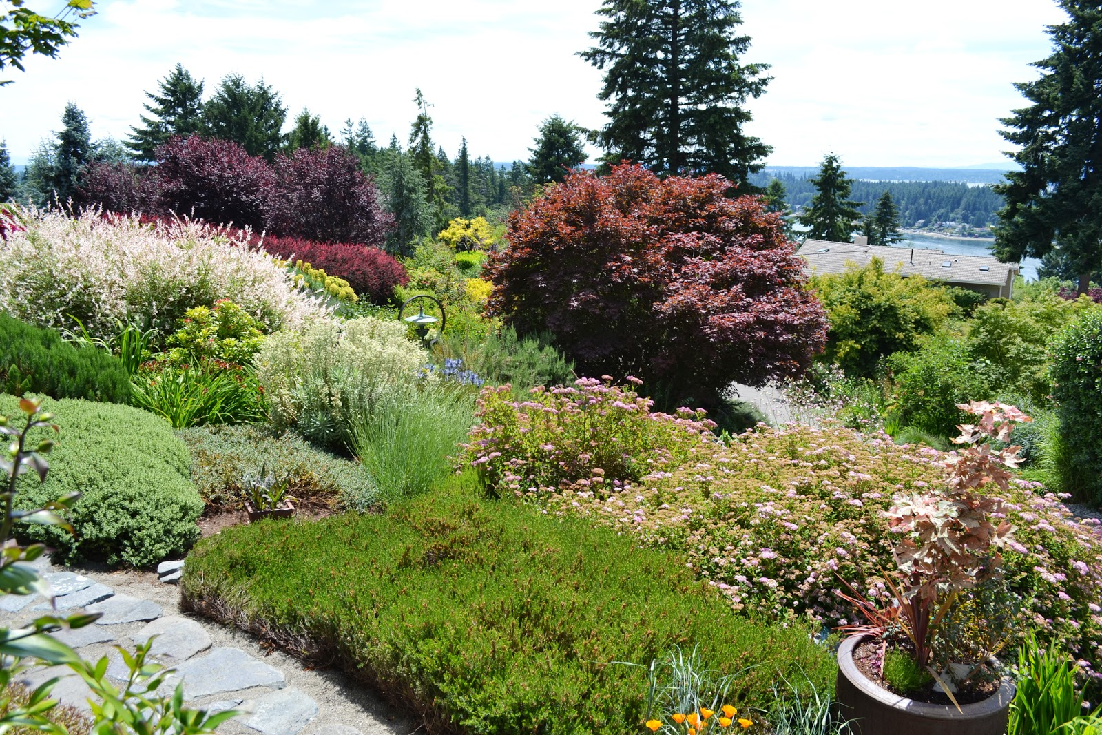 The Outlaw Gardener The Garden Of Terri Dufault