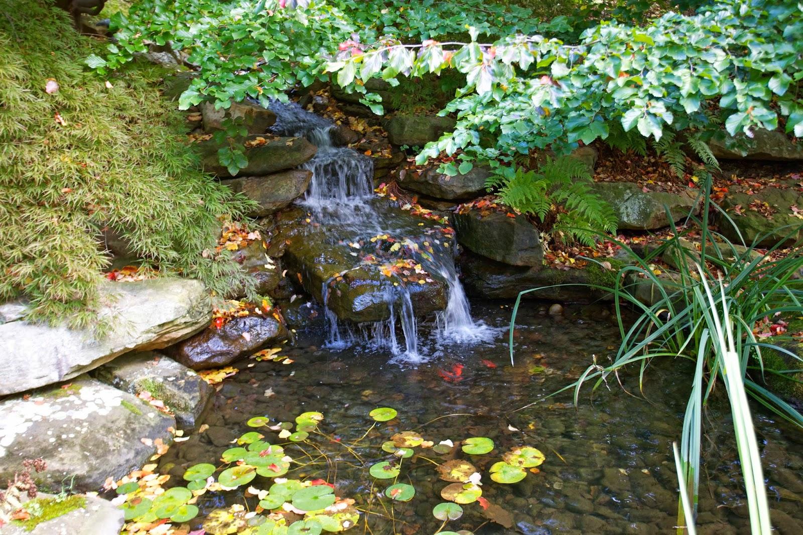 Fall Backyard Cleanup : Octoberfarm Fall Garden Cleanup