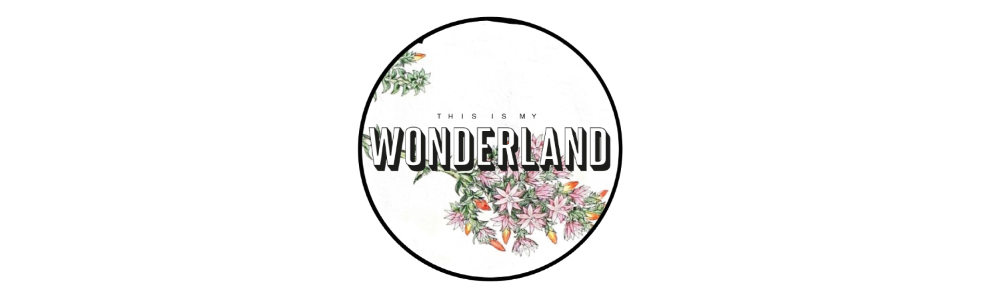 this is my wonderland shop