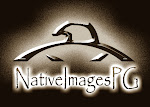 Native American Birdsinging Channel