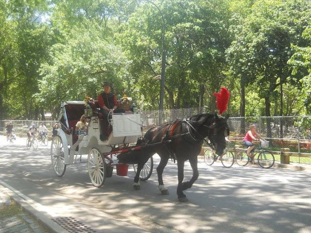 """<img src=""""New York.jpg"""" alt=""""Central Park"""" />"""