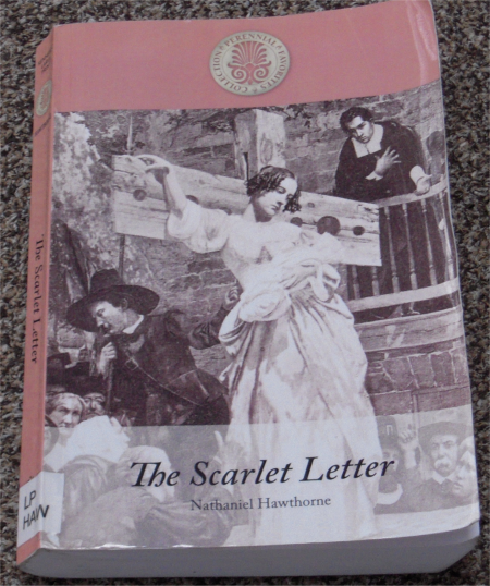 desire of freedom a review of the scarlet letter Symbols, society and the individual nathaniel hawthorne's the scarlet letter seems to be created around hawthorne's obsession with the in order to form a deeper understanding of the symbolic scarlet a conceived as a punishment by a puritan society's desire to uphold its.