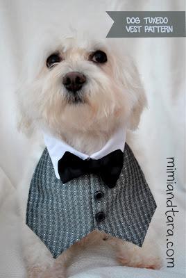 dog tuxedo vest pattern