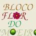 """É hoje o grande dia """" Desfile do Bloco Lírico Flor do Limoeiro""""."""