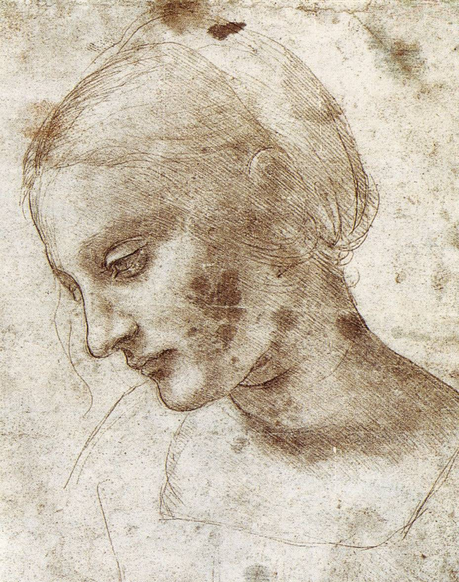 Absyntowa wr ka szkice leonarda artysta tygodnia - Dessin de leonard de vinci ...
