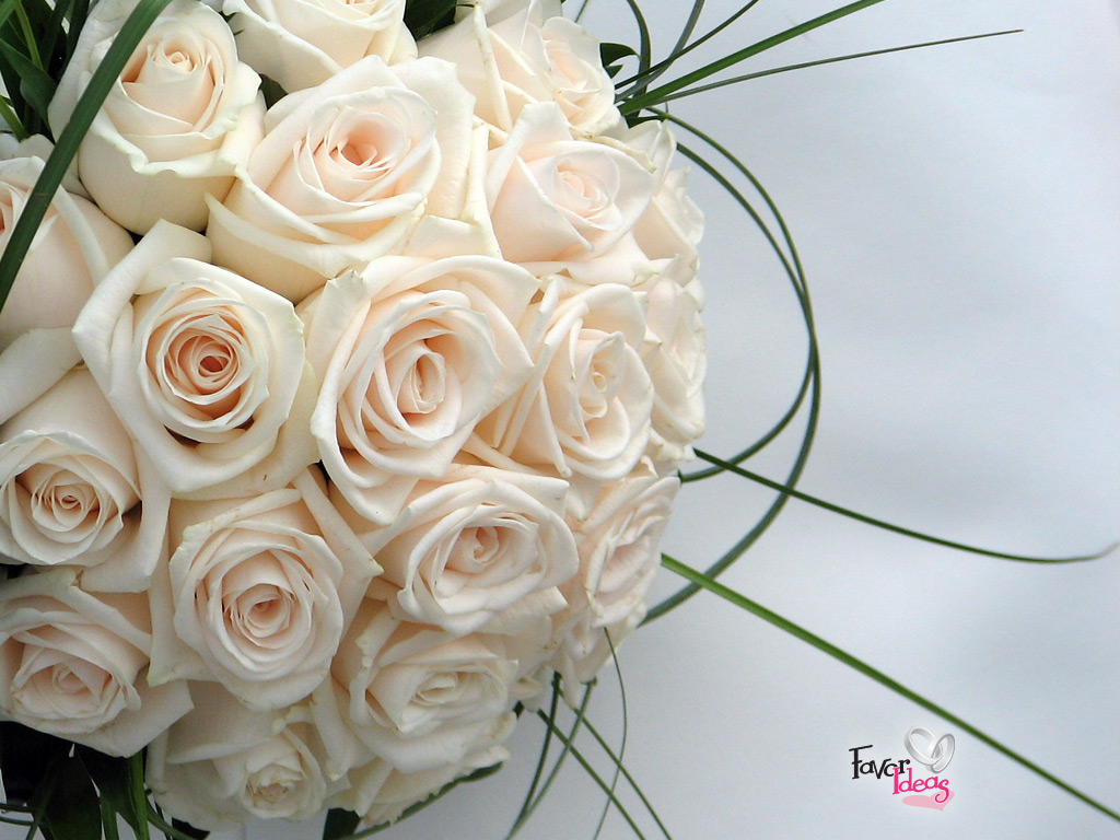 Wedding Rose Background