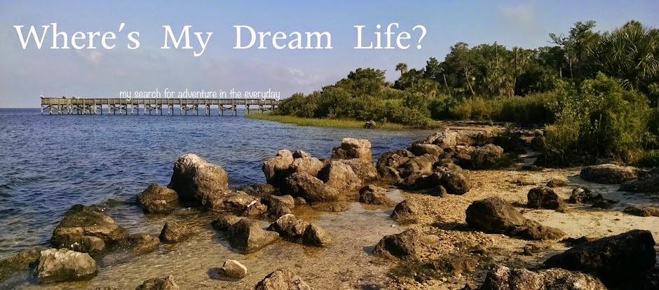 Where's My Dream Life?