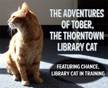 Tober the Library Cat (Featuring Chance)