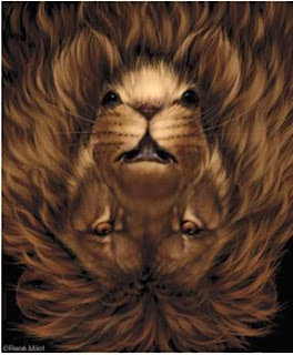 mouse lion upside down optical illusion