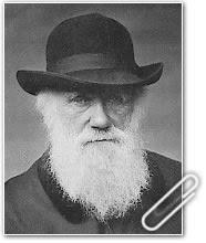 Día de Darwin: contra la superstición creacionista