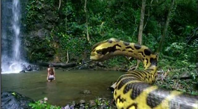 snake eats girl