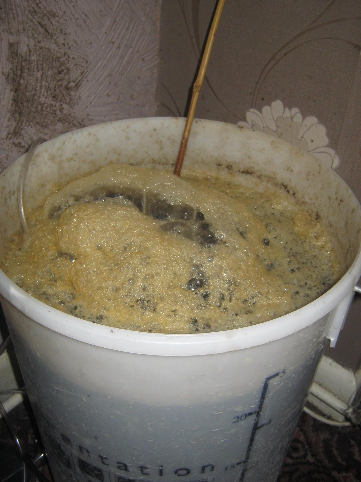 how to make vermicompost tea