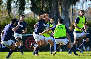 Formación de Los Pumas vs Irlanda