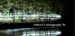 Bobcat13 photography