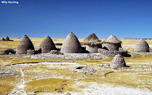 Conjunto de putucus en el Altiplano