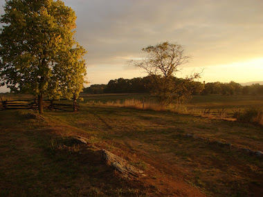 Antietam&#39;s Cornfield at Sunrise