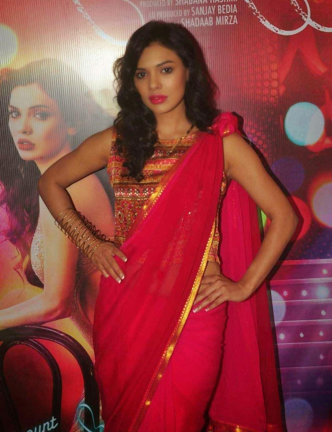 Sara Loren In Saree From Barkhaa Hindi Movie Promotion Stills