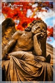 Mon ange gardien...