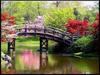 Registros Primavera-