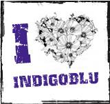 Indigo Blu Challenge Blog