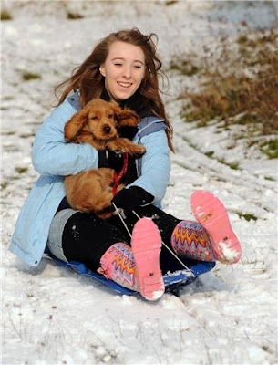 Dog Sledging at Newlands Corner