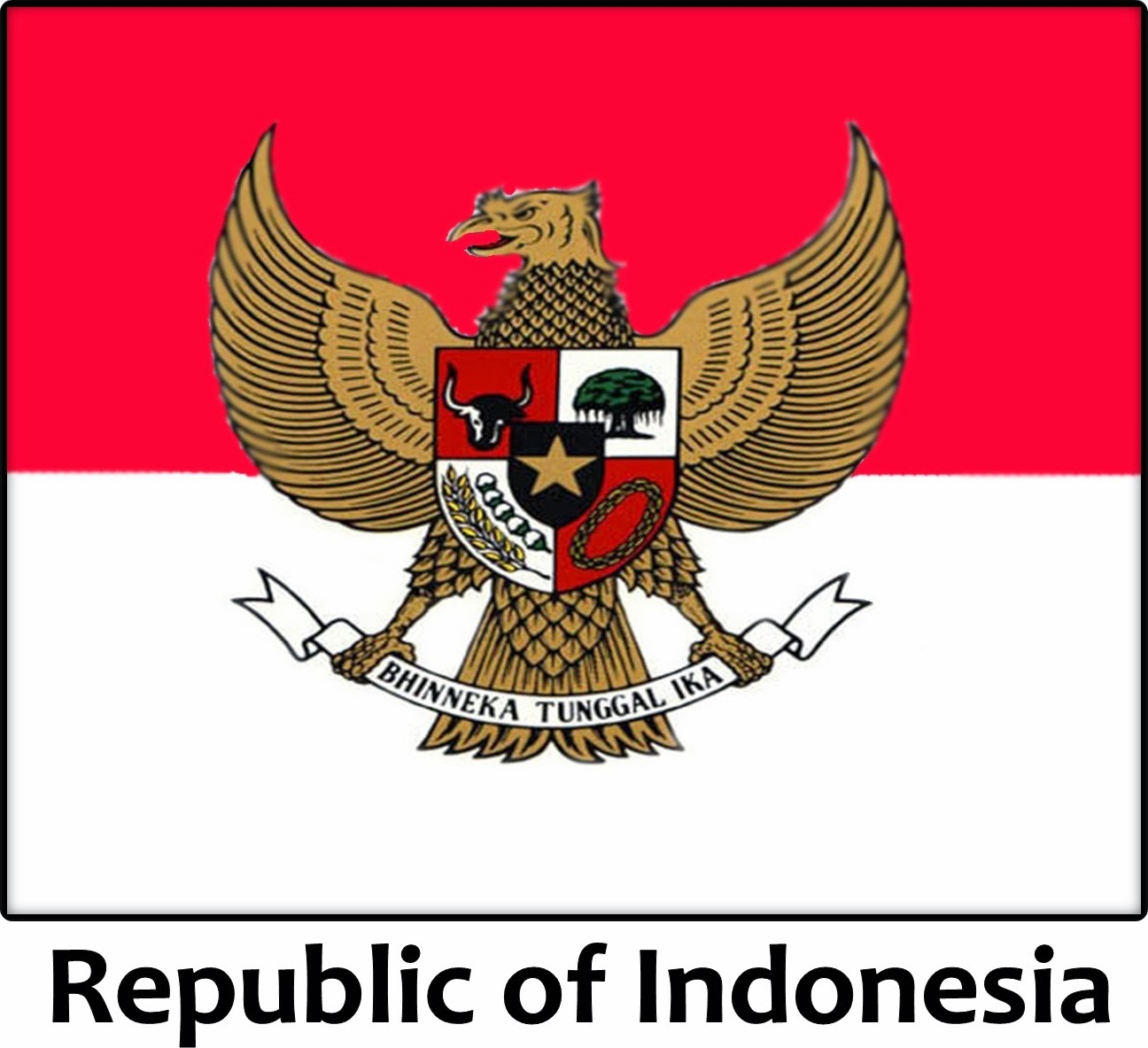 republic+indonesia