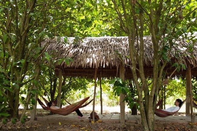 Những điểm du lịch hấp dẫn nhất tại Vĩnh Long 2
