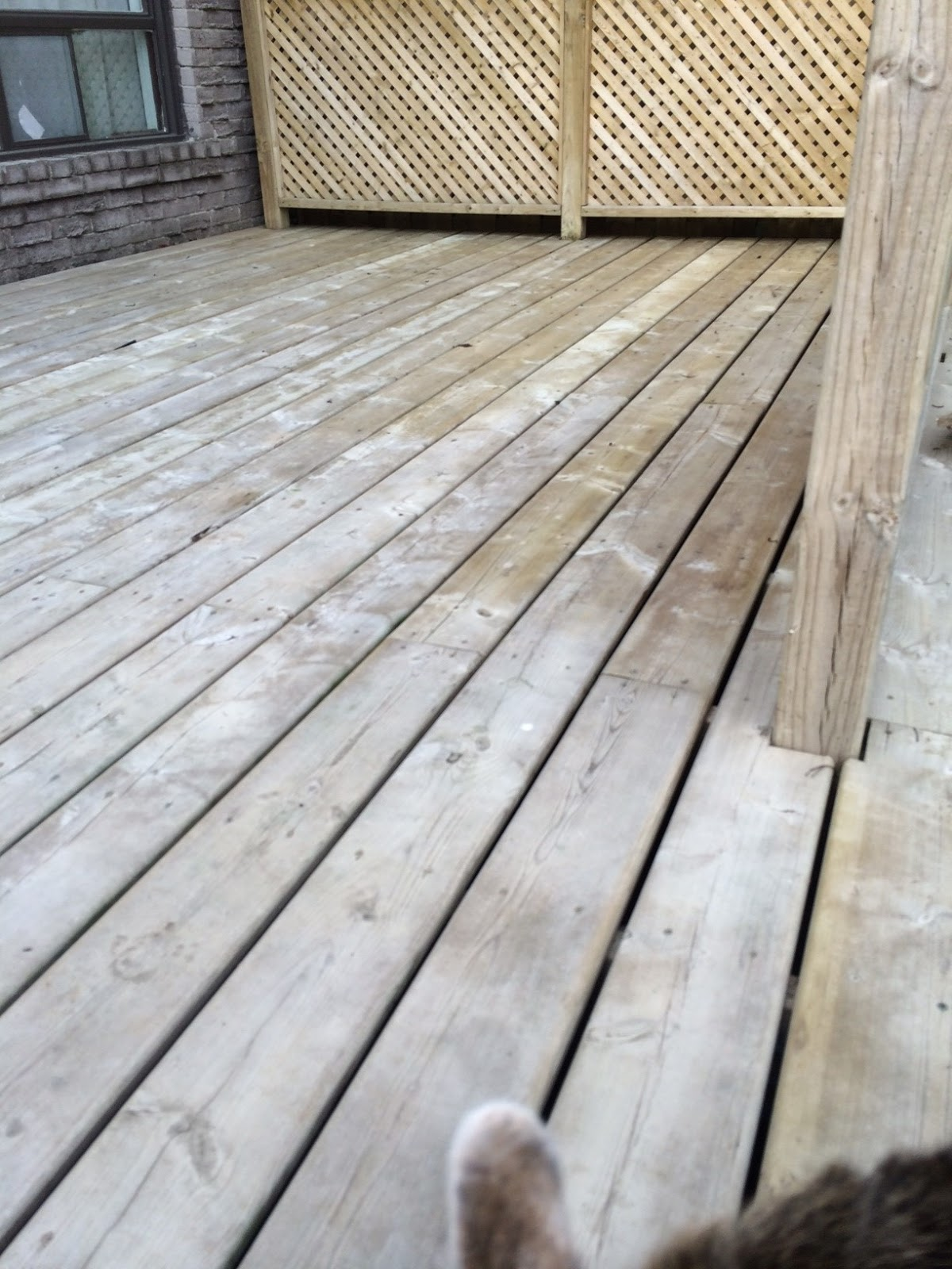 Erin mills paint decor centre inc home - After Another Shot Of My Clean Deck That Ear You See That S My Dog Inspecting My Work