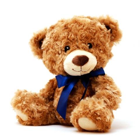 14 boneka teddy bear cokelat yang lucu