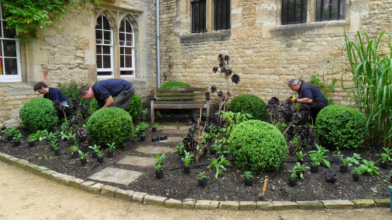 Worcester College Gardeners Planting Out Begins For This