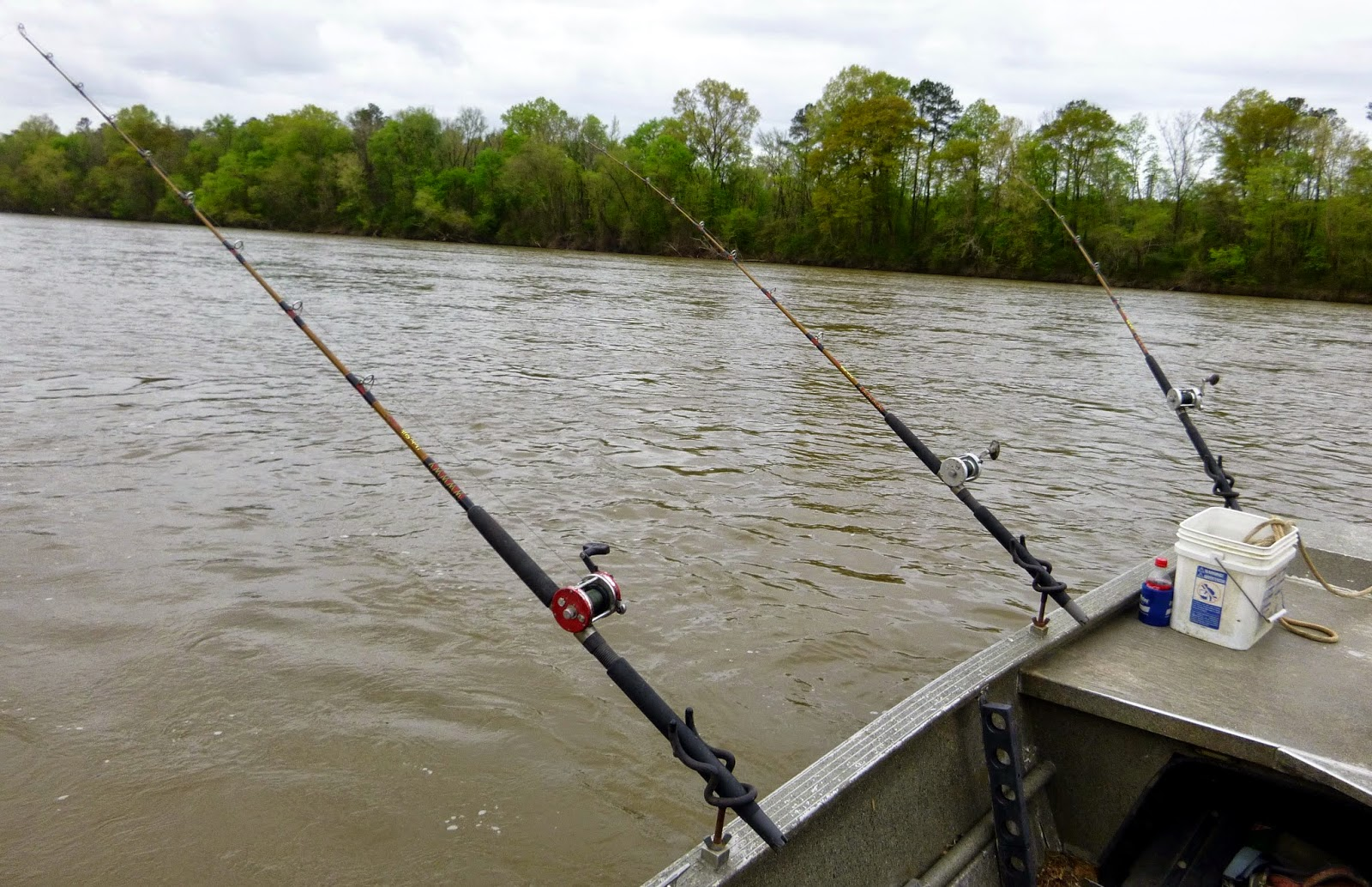 Top water charters fishing reports and news beaufort for Blue river fishing report