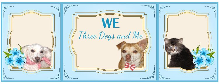 We three dogs and me