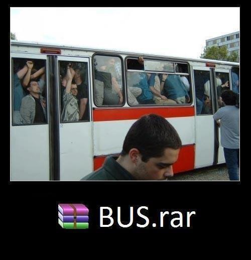 Bus+comprimido.jpg