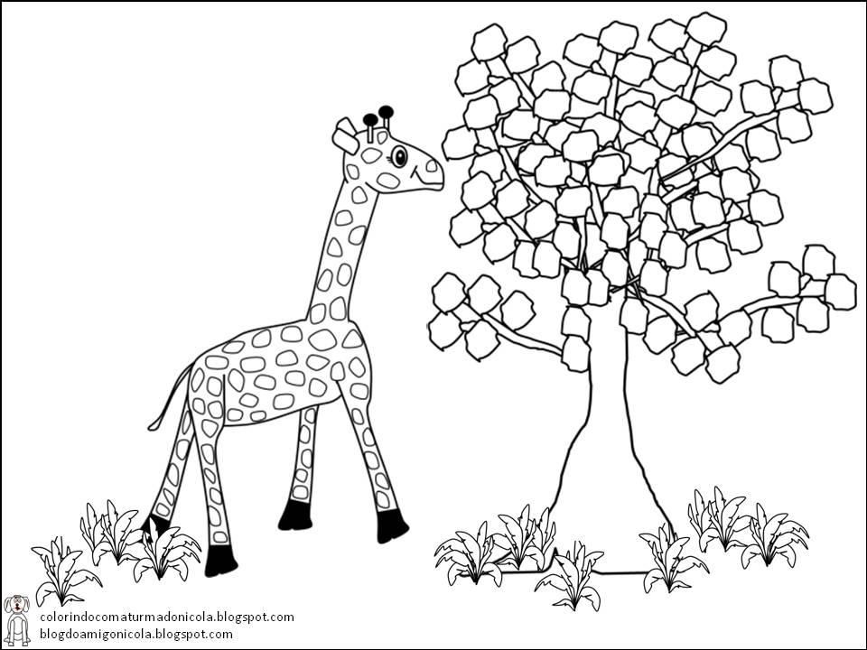 Desenho de uma Girafa fofa para colorir Hello Kids - imagens para colorir girafa