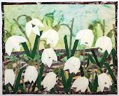 скоро будет весна.....