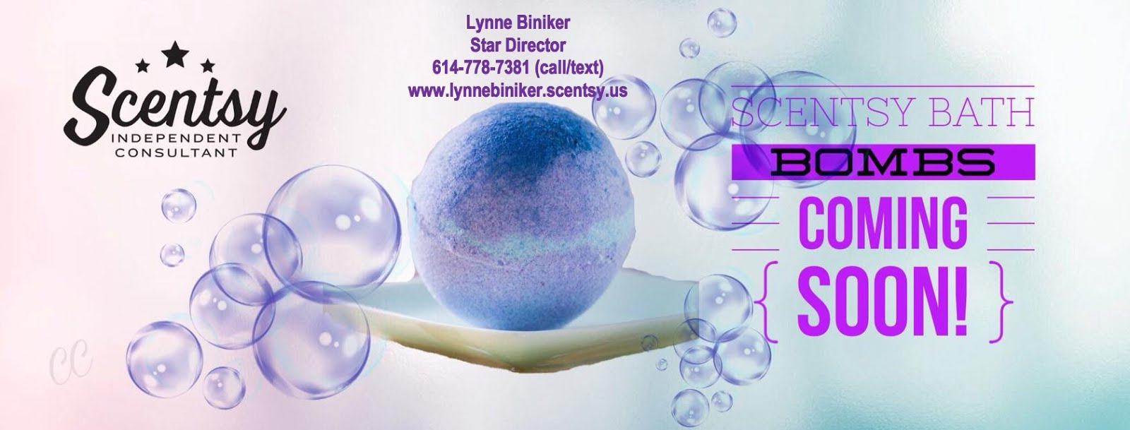 Lynne Biniker ~ Independent Scentsy Consultant